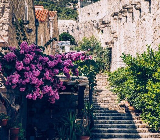 Private Transfer Dubrovnik to Split with Ston Town